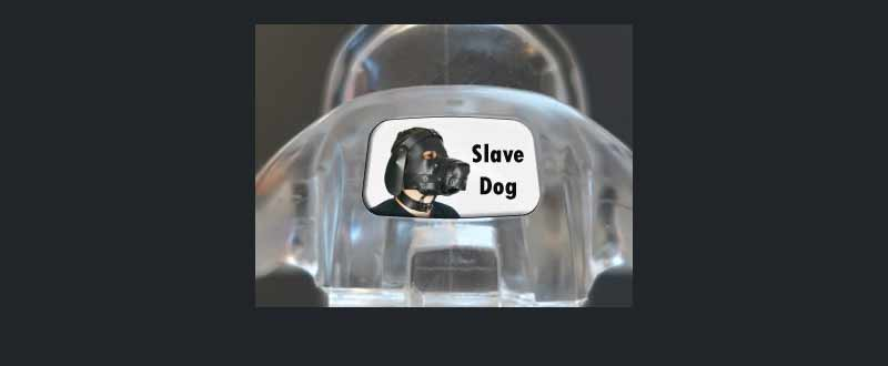 Male chastity device : Slave Dog